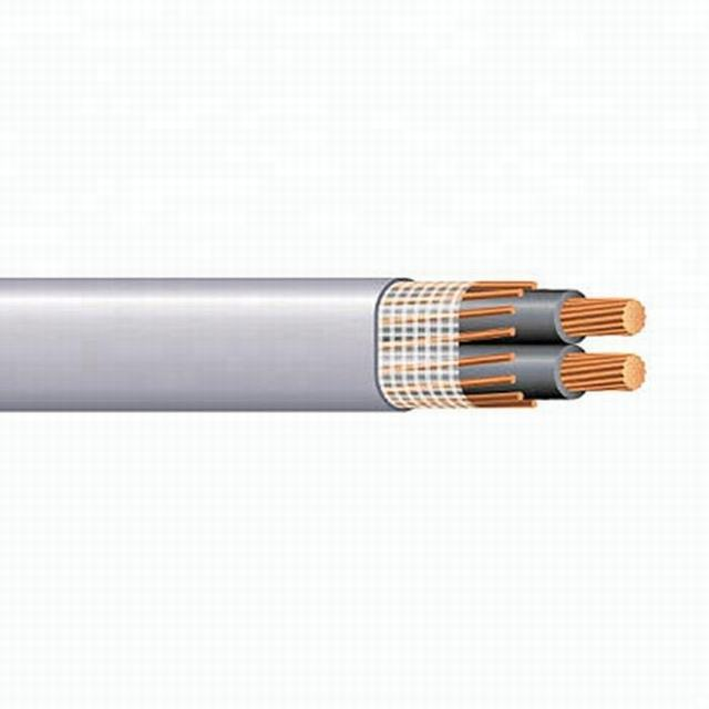 600V 2*10 AWG Copper Conductor Concentric Cable